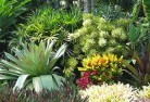 Allawah Sustainable landscaping 3
